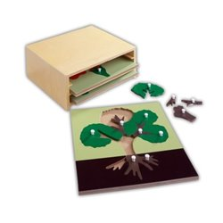 Botany Cabinet - Set of 3 puzzles